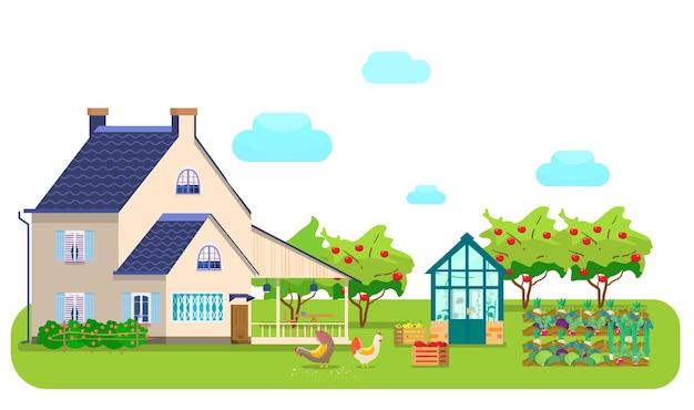 Cena do campo. casa de campo, estufa, galinhas bicando grãos, caixas de madeira com vegetais, horta, pomar de maçãs, hortaliças