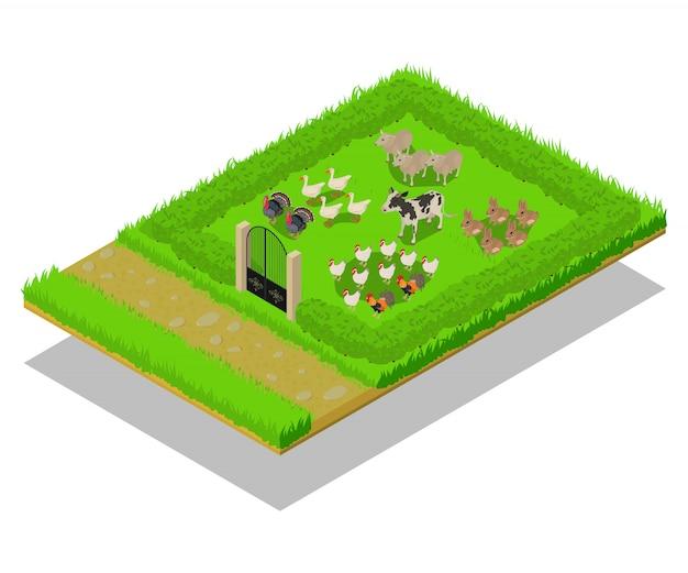 Cena do conceito de gado