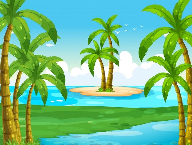 Cena do oceano com coqueiros na ilha