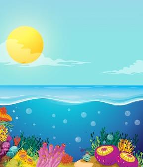 Cena do oceano e fundo debaixo d'água