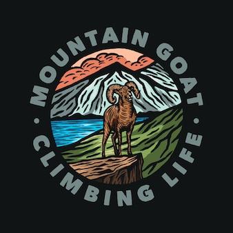 Cena natural de cabras selvagens na montanha de aventura