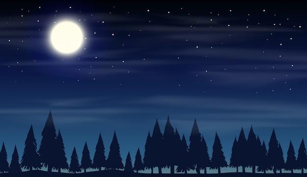 Cena noturna com madeiras de silhueta