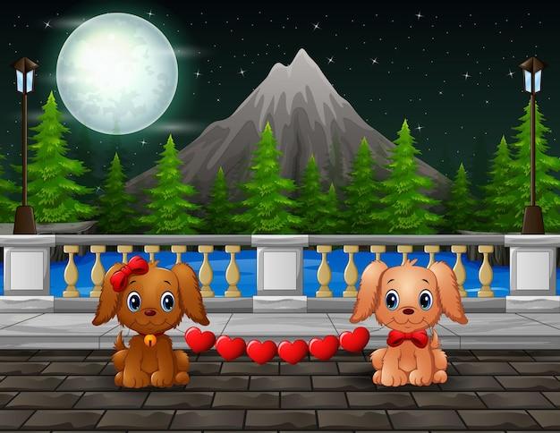Cena noturna com um casal de cachorros mordendo coração vermelho