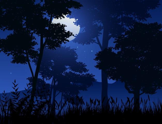Cena noturna na floresta