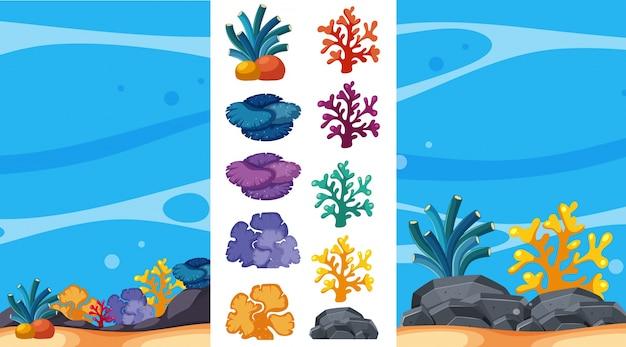 Cena subaquática com recifes de corais