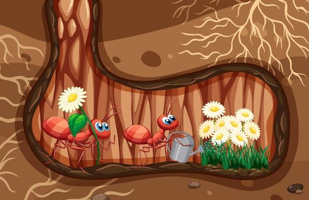 Cena subterrânea com formigas que regam plantas