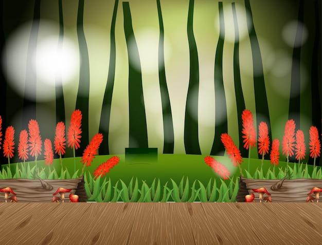 Cena vazia de paisagem natural com desfoque de fundo