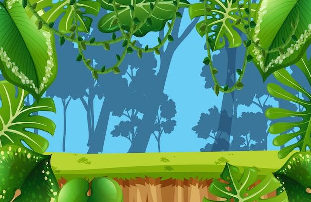 Cena vazia do ambiente da selva