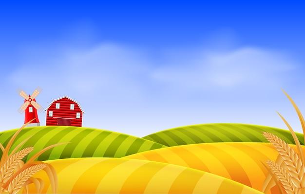 Cenário de campo de trigo