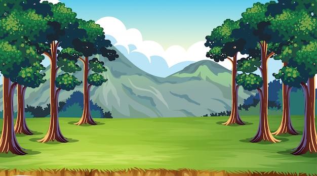 Cenário vazio da natureza