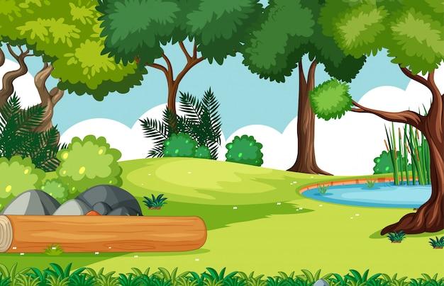 Cenário vazio do parque natural do fundo