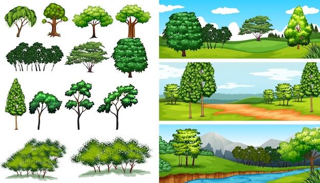 Cenas da natureza com árvores e ilustração de campos