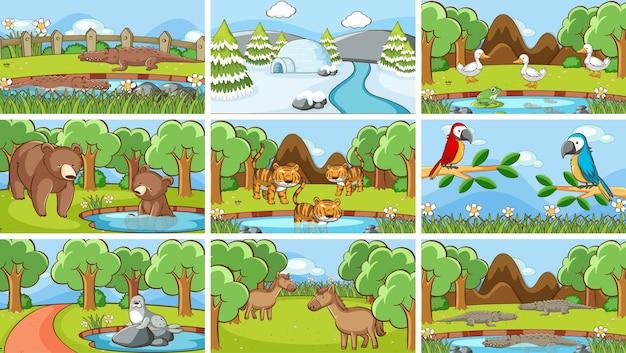 Cenas de fundo de animais selvagens
