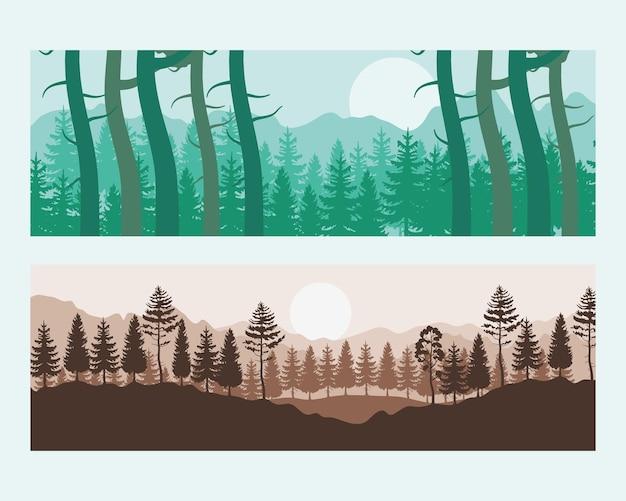 Cenas de paisagens de floresta verde e pôr do sol com ilustração de pinheiros