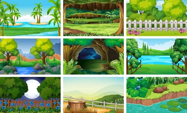 Cenas diferentes de floresta e rio