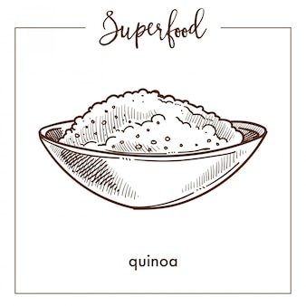 Cereal de quinoa no esboço de superalimento monocromático tigela profunda