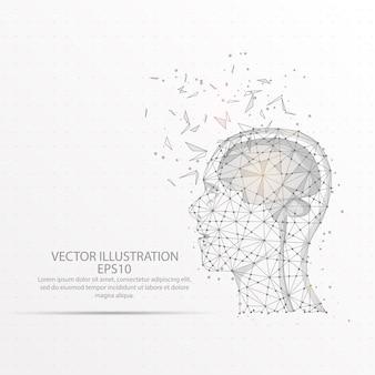 Cérebro com quadro de fio poli baixa cabeça humana.