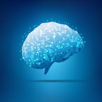Cérebro de polígono