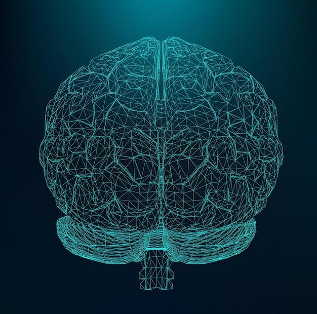 Cérebro humano de ilustração vetorial. a grade estrutural de polígonos. fundo abstrato do vetor.
