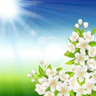 Cereja de florescência
