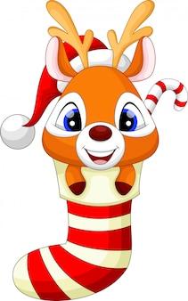 Cervo de bebê fofo nas meias com chapéu de natal vermelho