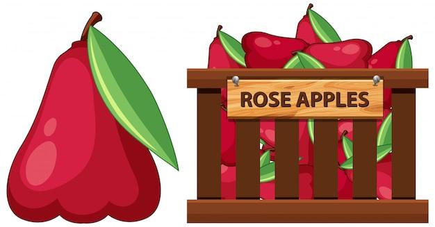 Cesta cheia de maçãs rosas em branco