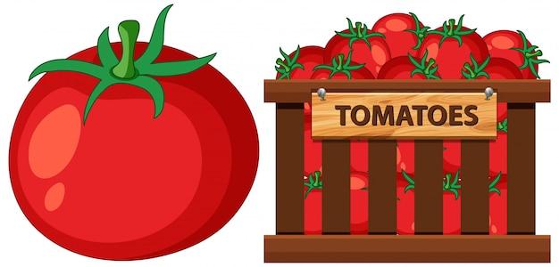 Cesta cheia de tomates em branco