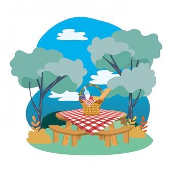 Cesta de piquenique na floresta
