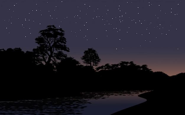 Céu estrelado sobre a floresta com o rio