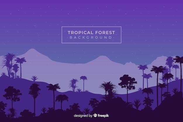 Céu noturno com silhuetas de floresta tropical