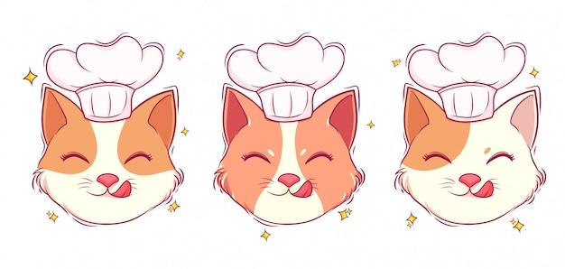Chef de gato bonito desenhado à mão