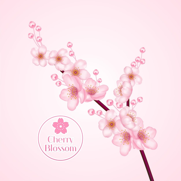 Cherry blossom, ramo de sakura com ilustração de flores cor de rosa.