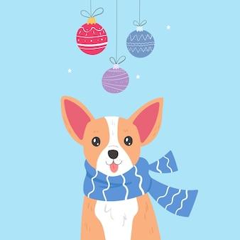 Chihuahua com cachecol e brinquedos de natal.