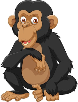 Chimpanzé de desenhos animados isolado no fundo branco