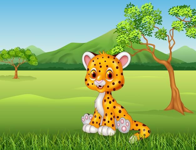 Chita de bebê fofo na selva