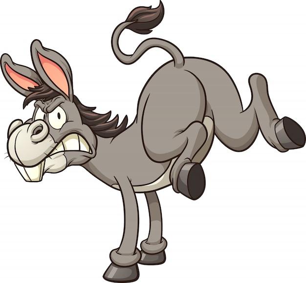 Chute de burro