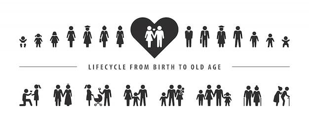 Ciclo de vida e processo de envelhecimento