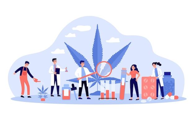 Cientistas estudando drogas com ilustração de cannabis