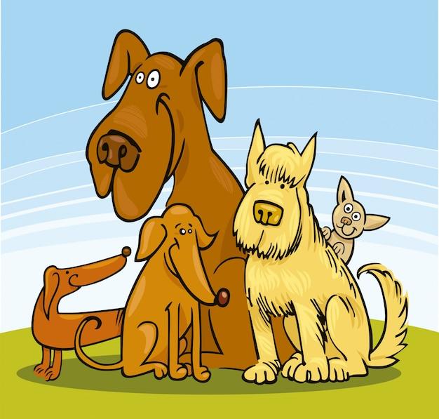Cinco cães engraçados