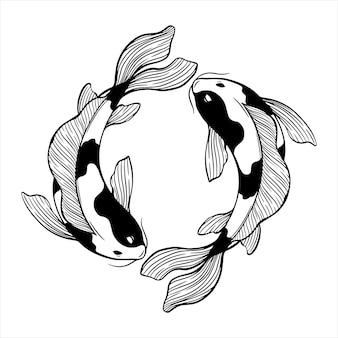 Circule peixes koi com esboço ou desenho à mão