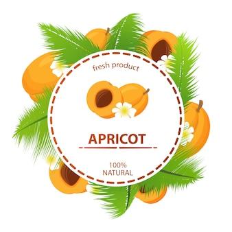 Círculo rótulo damasco frutas tropicais folhas de palmeira produto fresco 100% natural.