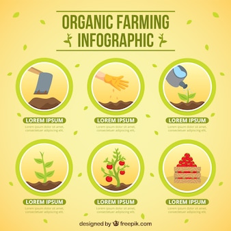 Círculos com agricultura biológica