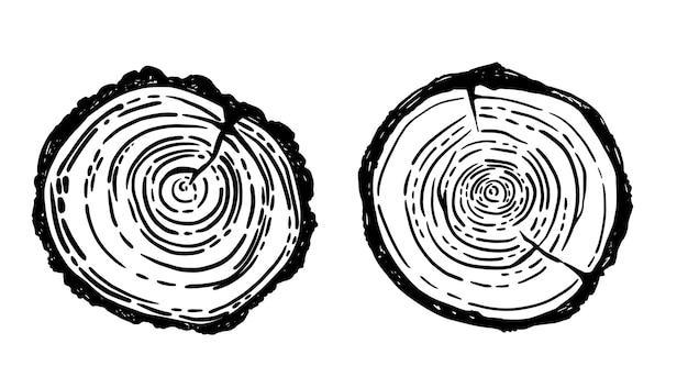 Círculos de árvore de madeira em vetor