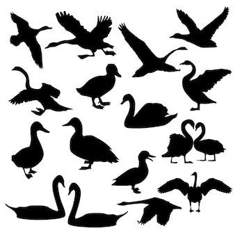 Cisne pássaro animal silhueta clip art