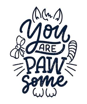 Citação de letras engraçadas sobre gatos