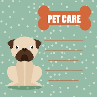 Clínica de cuidado de animais domésticos