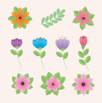 Clip-art bonito de nove flores no jardim