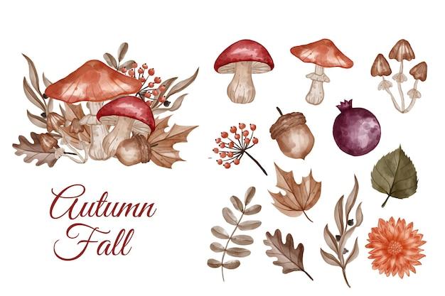 Clip-art com tema de outono, flores, folhas e cogumelos isolados