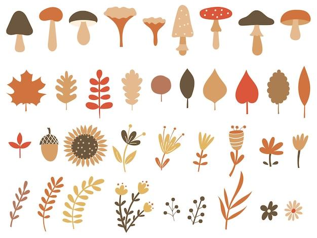 Clipart de outono com cogumelos e flores. ilustração vetorial. Vetor Premium