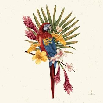 Clipart de verão tropical. emblema de verão útil para o projeto de plano de fundo.
